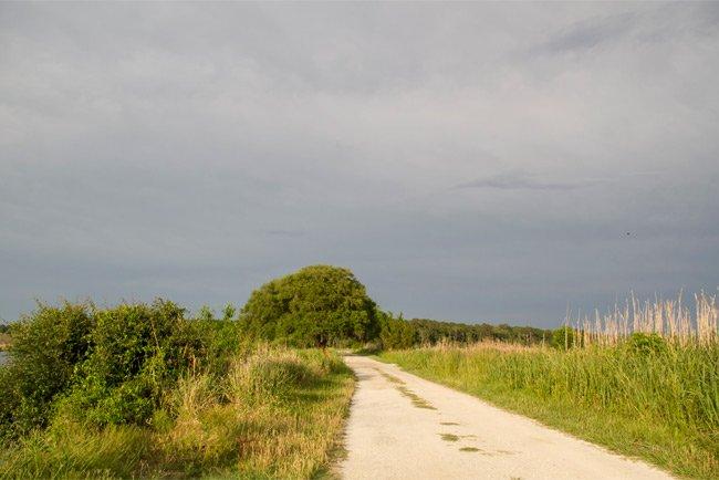 Donnelley WMA Path