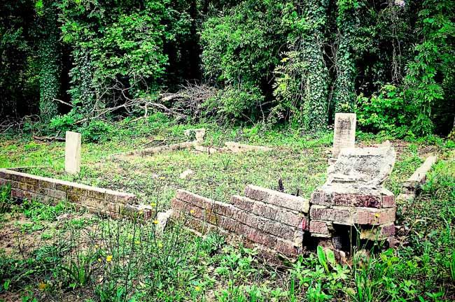 Douglass Cemetery Ruins