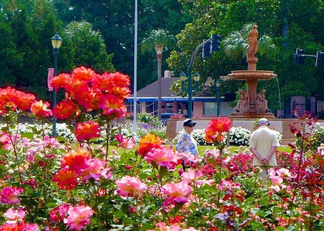Edisto Memorial Garden Orangeburg