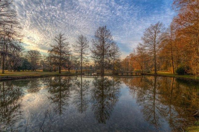 Edisto Memorial Gardens Orangeburg