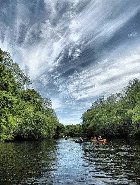 Edisto River above Cannadys