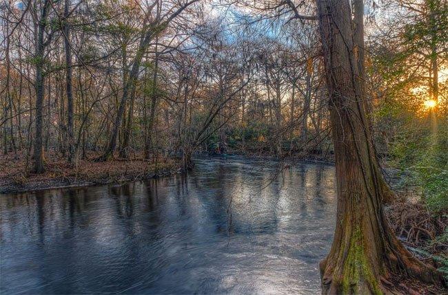Edisto River Orangeburg