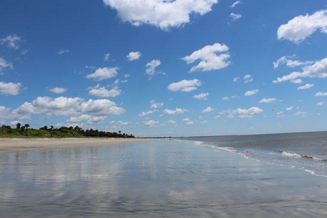 Edisto State Park Beach