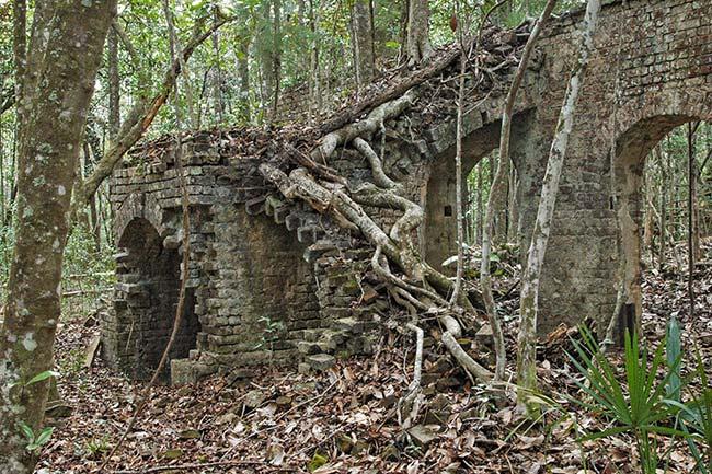 Eldorado Plantation Ruins