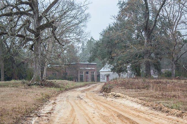 Davis Plantation Ella's Grove Entrance