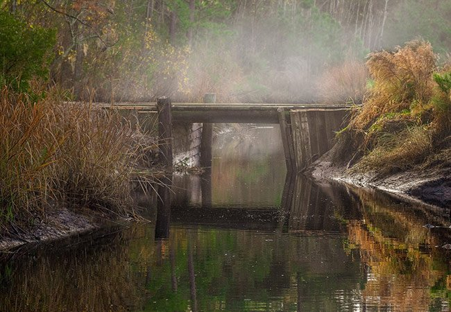 Foggy Bridge at Donnelley WMA