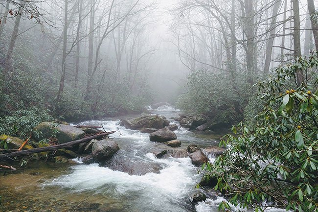 Foggy Jones Gap State Park