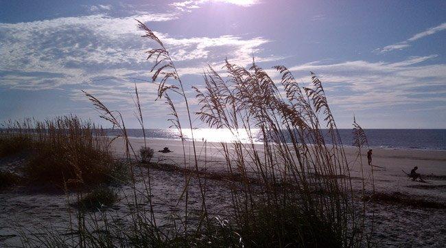 Folly Field Beach