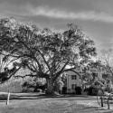 Frampton House