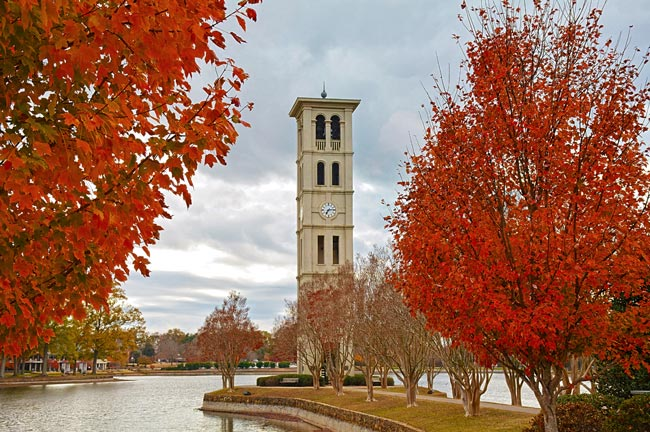Furman Bell Tower Greenville