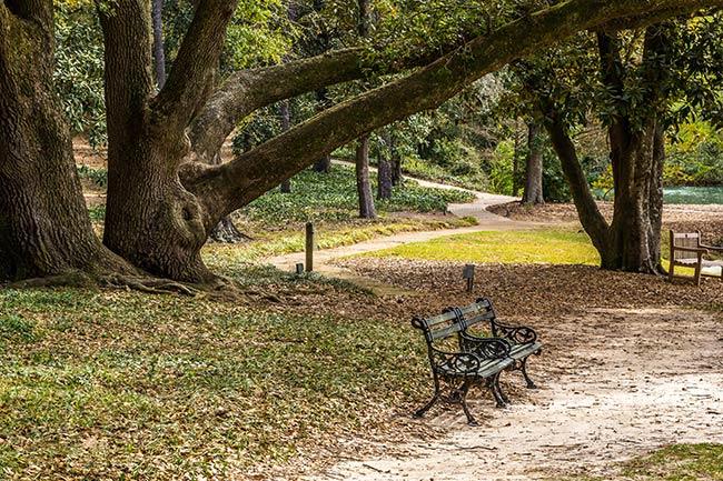 Hopeland Gardens