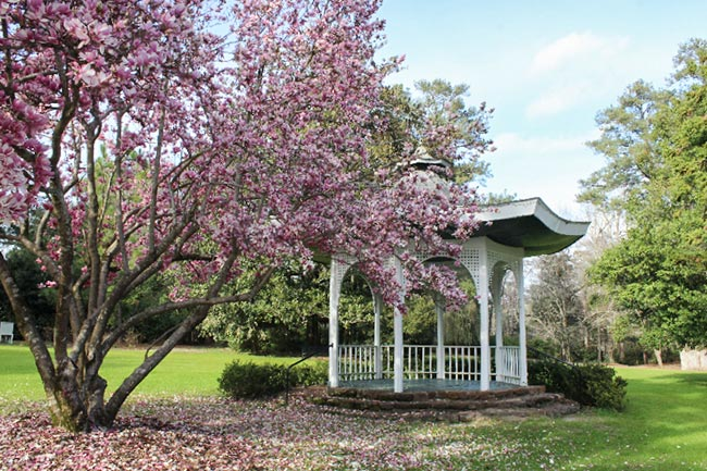 Gazebo at Swan Lake Iris Gardens