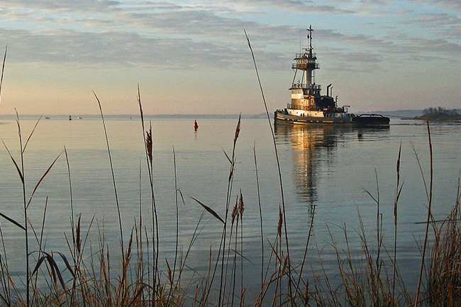 Tugboat in Winyah Bay