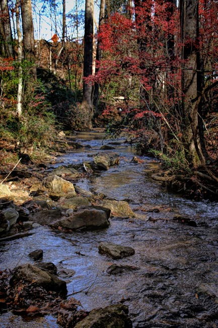 Gilreath Mill Stream