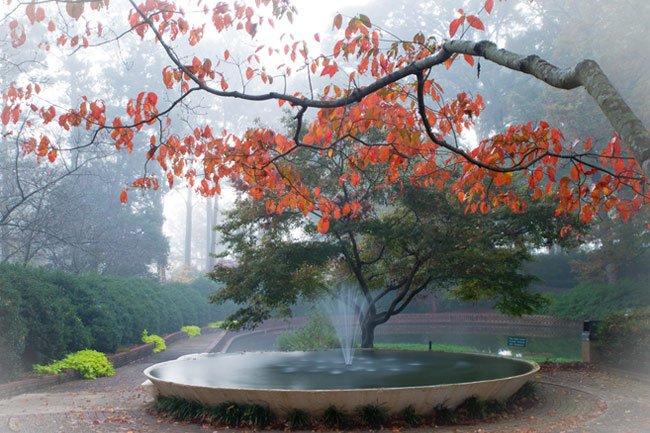Glencairn Fountain