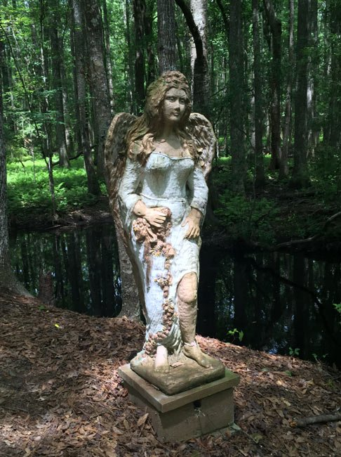 Great Swamp Angel