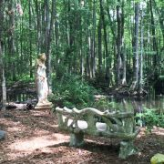 Great Swamp Ridgeland