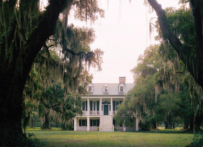 Grove Plantation