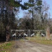 Ingleside Plantation