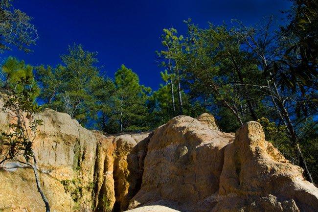 Hitchcock Woods Cliffs