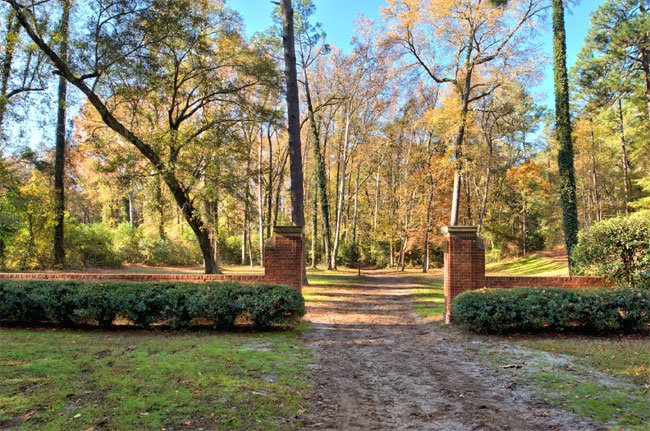 Hitchcock Woods