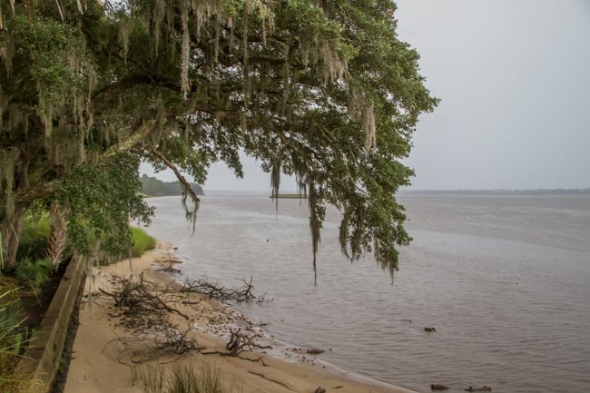 Hobcaw Barony on Winyah Bay