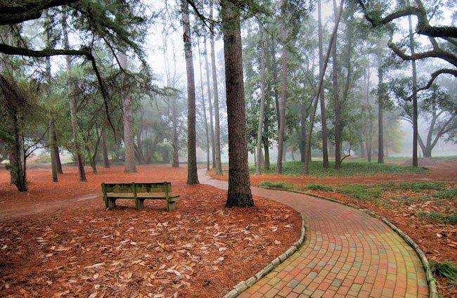 Hopelands Gardens Paths