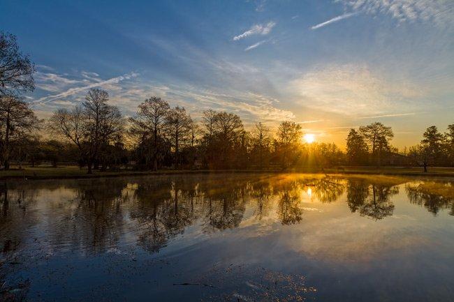 Horne Wetlands Park