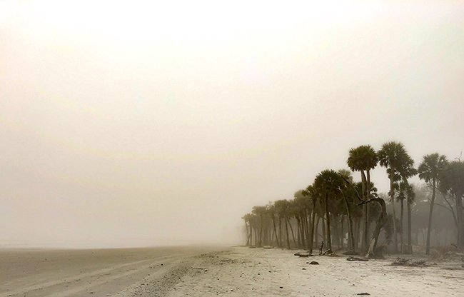 Hunting Island Foggy Beach