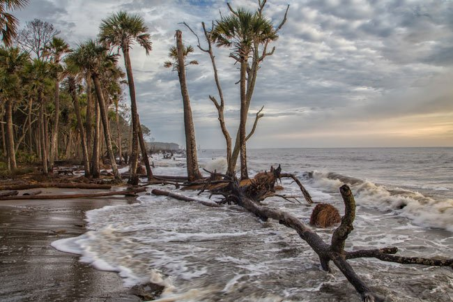 Hunting Island State Park Sc Picture