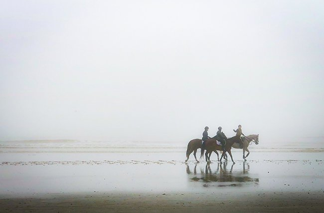 Hunting Island Horseback Riding in Fog