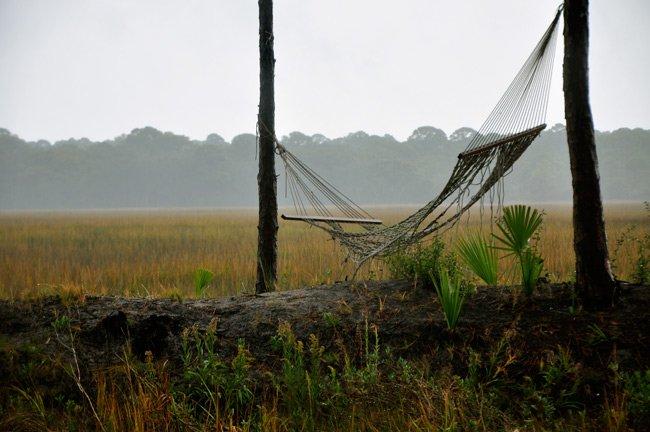 Hunting Island Hammock