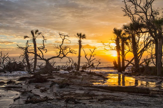 Hunting Island State Park Sunset