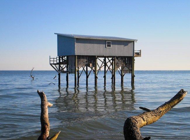 Hunting Island State Park - Beaufort County, South Carolina
