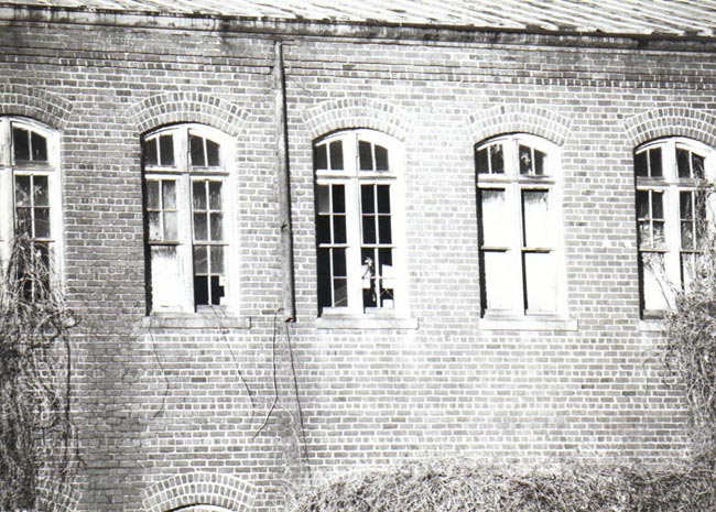 Imperial Tobacco Windows