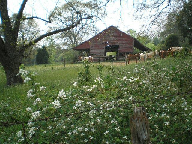 Indian Land Barn