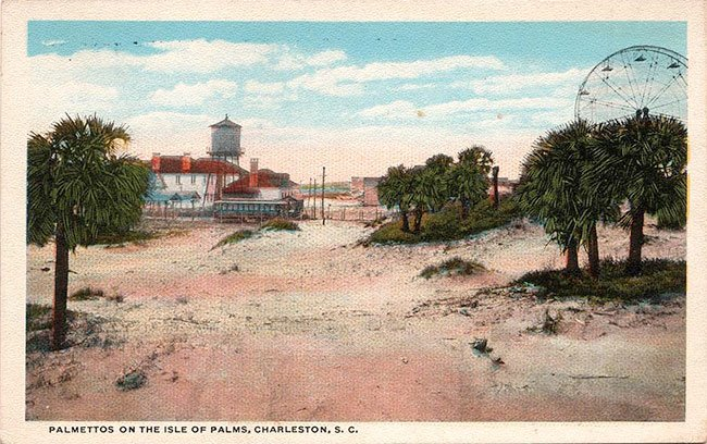 Isle of Palms Postcard View