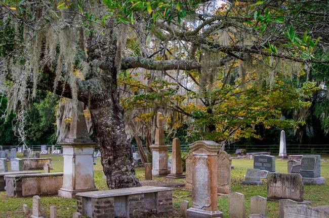 Johns Island Presbyterian Churchyard