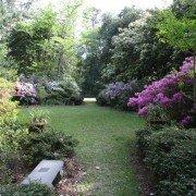 Kalmia Gardens