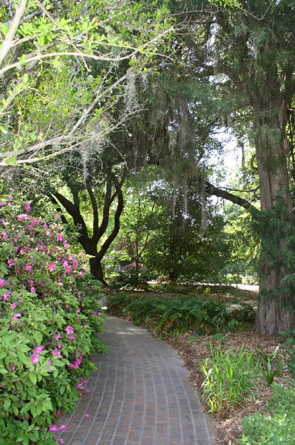 Kalmia Gardens Hartsville