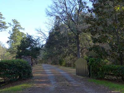 kensington-plantation