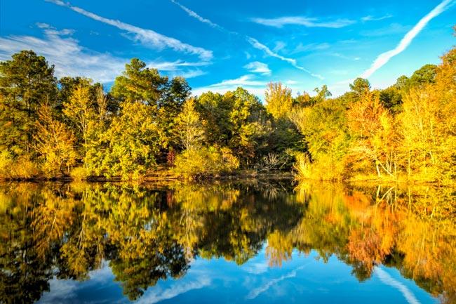 Lake Crandall ASC