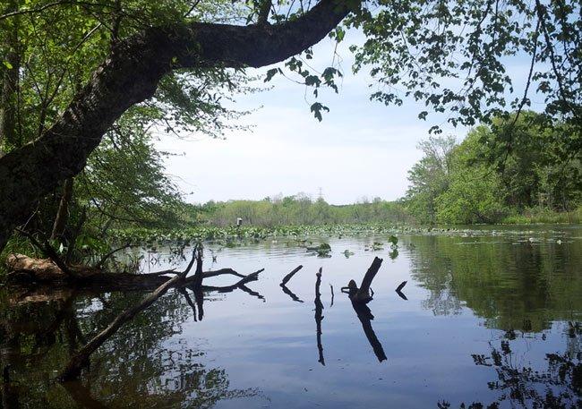Lake Cunningham Greer South Carolina Sc
