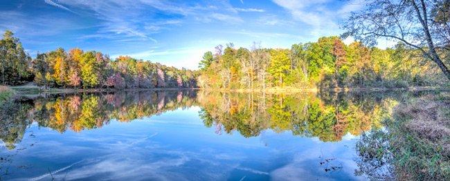 Lake Frances Panorama