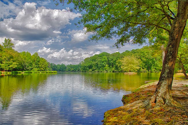 Lake Haigler at Anne Springs Close Greenway