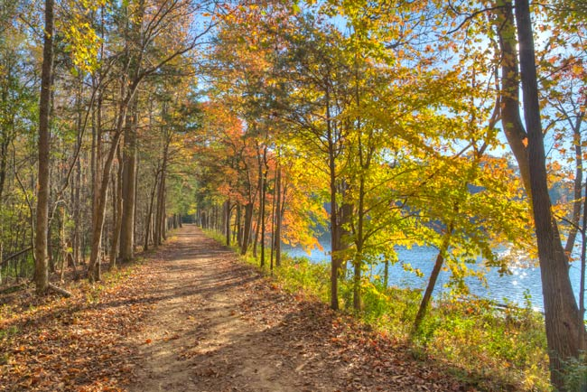 Lake Haigler Walking Trail