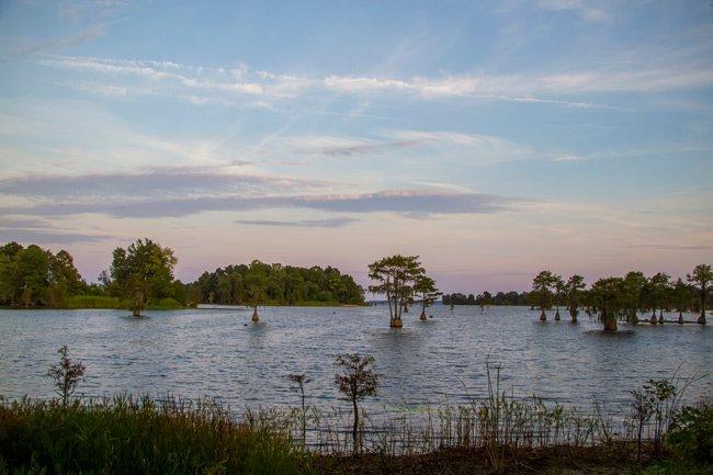 Lake Moultrie Berkeley County