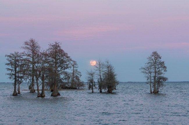 Lake Moultrie Moon