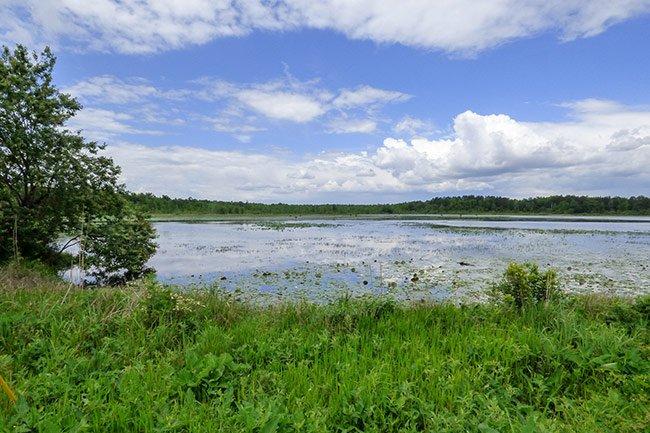 Lake Paul Wallace