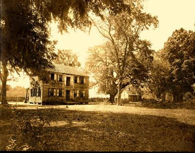 Lark Hill Plantation
